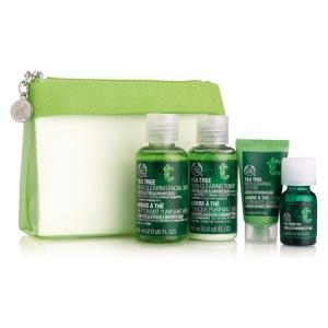tea-tree-skin-care-kit_l