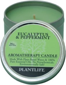 eucalyptus peppermint aromatherapy candle.jpg