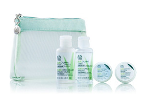 the body shop only aloe skin care travel kit