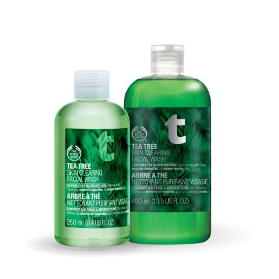tea tree skin clearing facial wash.jpg