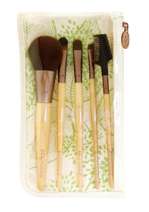 ecotools brush set 5 piece brush set